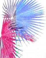 http://www.mauricematieu.com/files/gimgs/th-15_fanfare_v2.jpg