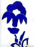 http://www.mauricematieu.com/files/gimgs/th-161_Fleur-bete-01.jpg